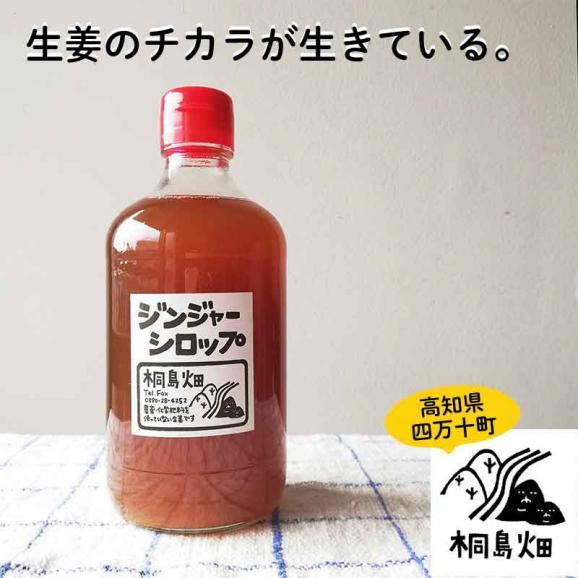 桐島畑のジンジャーシロップ 480g入り 高知県四万十川町産しょうが 生姜シロップ しょうがシロップ01