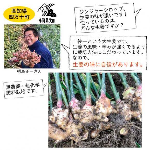 桐島畑のジンジャーシロップ 480g入り 高知県四万十川町産しょうが 生姜シロップ しょうがシロップ02