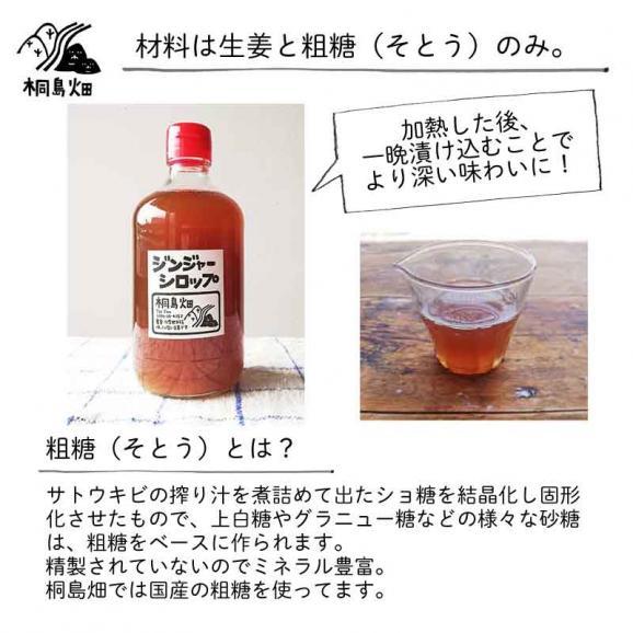 桐島畑のジンジャーシロップ 480g入り 高知県四万十川町産しょうが 生姜シロップ しょうがシロップ04