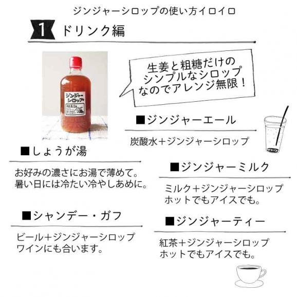 桐島畑のジンジャーシロップ 480g入り 高知県四万十川町産しょうが 生姜シロップ しょうがシロップ05