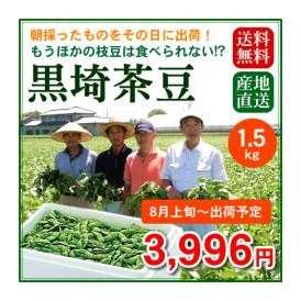 【予約販売】【8月上旬~8月中旬出荷】今年も予約開始!大人気!新潟のブランド枝豆「黒埼茶豆」1.5kg