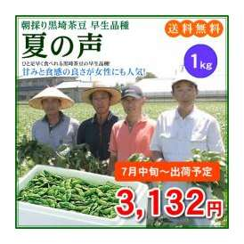 【予約販売】【7月中旬~7月下旬出荷】甘みと食感が良さが女性にも人気の黒埼茶豆「夏の声」1kg