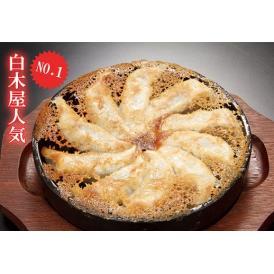 居酒屋白木屋人気1 国産鉄鍋餃子(冷凍・20個入)