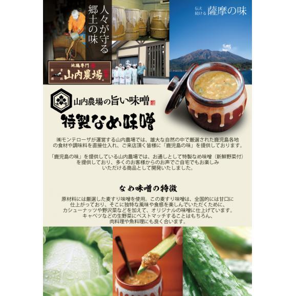 山内農場で大人気のなめ味噌(野沢菜入)(冷凍・160g)【なめみそ】【お通し味噌】 04
