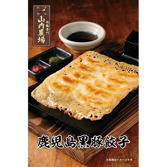 山内農場 鹿児島黒豚餃子(冷凍・20ケ/P)01