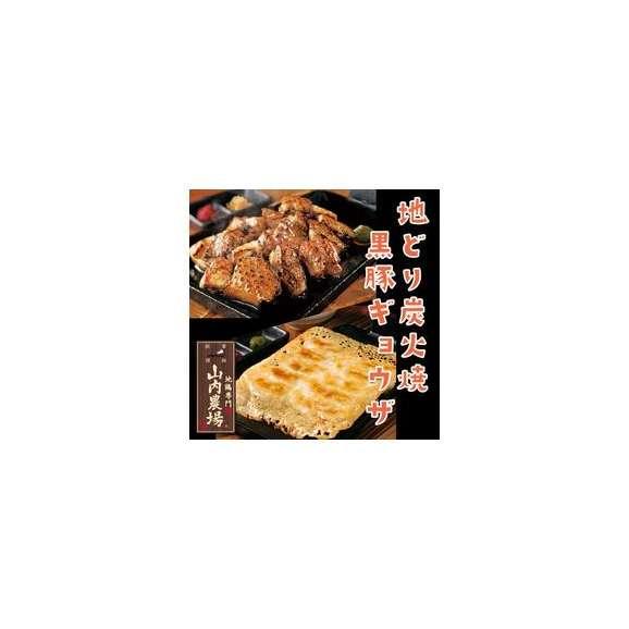 薩摩山内地どり炭火焼と鹿児島黒豚餃子セット(冷凍・地どり炭火焼100g/PC×2、黒豚餃子20ケ/P×3)01