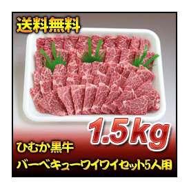 ひむか黒牛バーベキューワイワイセット5人用(1.5kg)