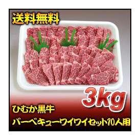 ひむか黒牛バーベキューワイワイセット10人用(3kg)