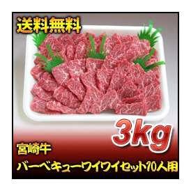 宮崎牛バーベキューワイワイセット10人用(3kg)