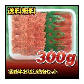 【送料無料】宮崎牛お試し焼肉セット 300g