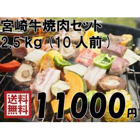 【送料無料】BBQ宮崎牛焼肉セット 2.5kg(10人前)【minami-special0408】