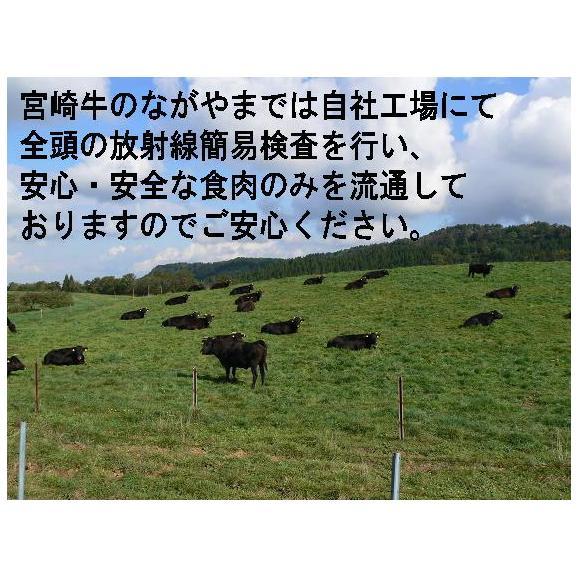 【送料無料】九州産和牛モモしゃぶすき用 1kg03