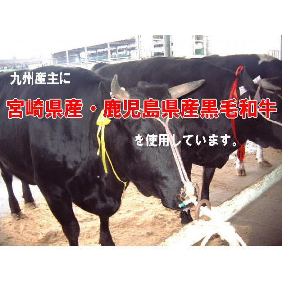 【送料無料】九州産和牛モモしゃぶすき用 1kg04