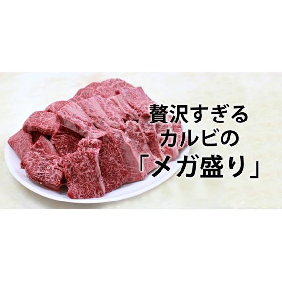 メガ盛り!宮崎牛カルビ1.2Kg【送料無料】A4~A5等級/焼肉/バーベキュー/BBQ/01