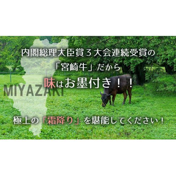 メガ盛り!宮崎牛カルビ1.2Kg【送料無料】A4~A5等級/焼肉/バーベキュー/BBQ/02