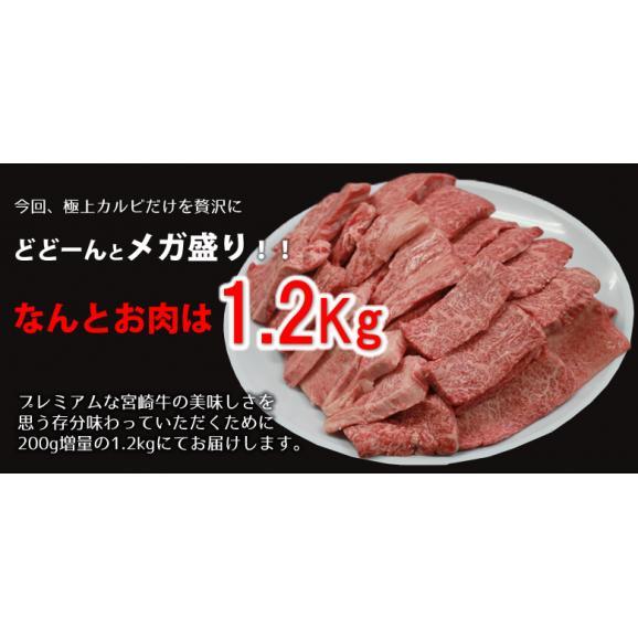 メガ盛り!宮崎牛カルビ1.2Kg【送料無料】A4~A5等級/焼肉/バーベキュー/BBQ/03