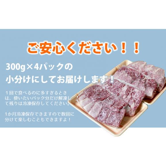 メガ盛り!宮崎牛カルビ1.2Kg【送料無料】A4~A5等級/焼肉/バーベキュー/BBQ/04