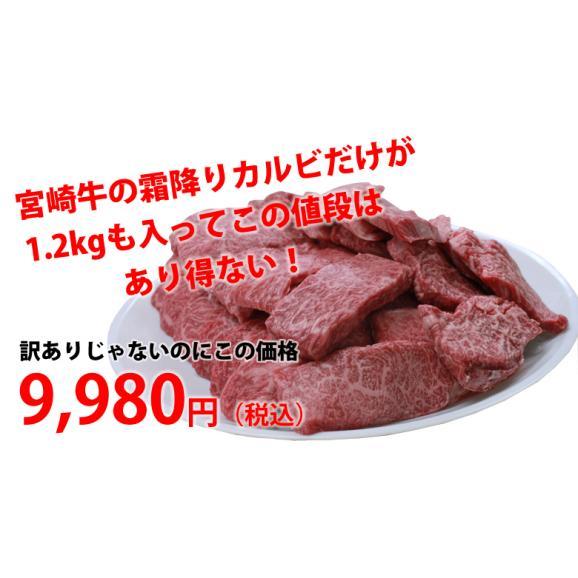 メガ盛り!宮崎牛カルビ1.2Kg【送料無料】A4~A5等級/焼肉/バーベキュー/BBQ/05