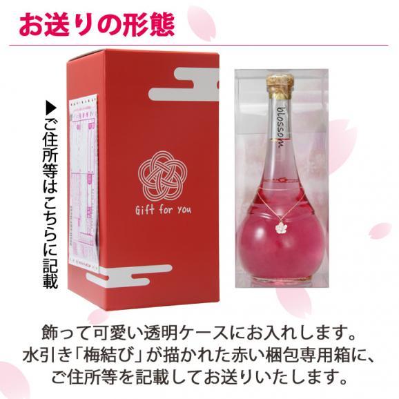 blossom~さくら梅酒~ 【500ml】02