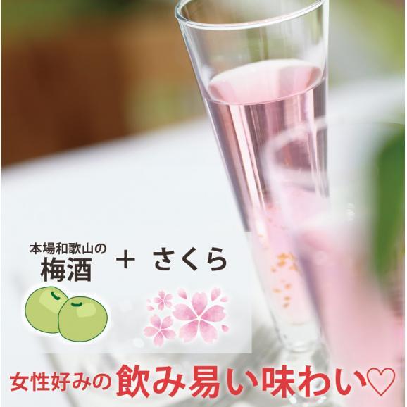 blossom~さくら梅酒~ 【500ml】03