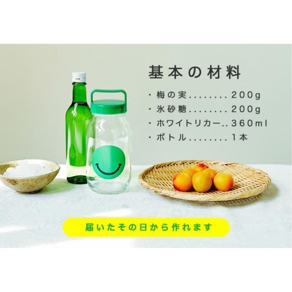 ●NIJYUMARUセット● お子様と一緒に作る手作り梅酒セット 900ml×1本04