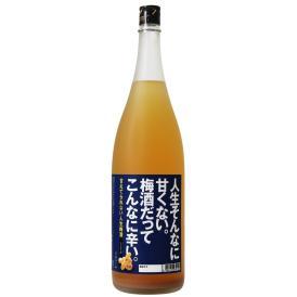 人生そんなに甘くない。梅酒だってこんなに辛い。  梅酒 甘くない 甘さ控えめ 生姜 しょうが 四合瓶 720ml ミニボトル 甘えてられない人生梅酒 中野BC