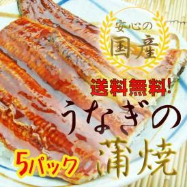 送料無料 静岡産 うなぎ蒲焼 1尾入×5本セット