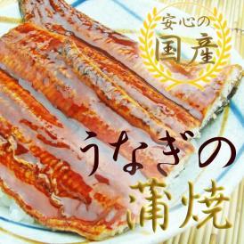 【静岡】うなぎ蒲焼 1尾入