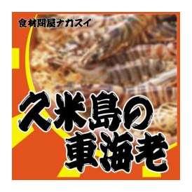 久米島の車海老 500g(21〜29尾) 【冷凍】