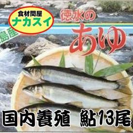 国産 鮎 1kg(13尾) 徳島県(滋賀県産の場合有)