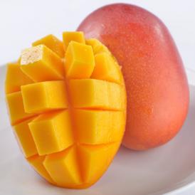 南国フルーツ・宮崎産完熟マンゴ-3Lサイズ3玉