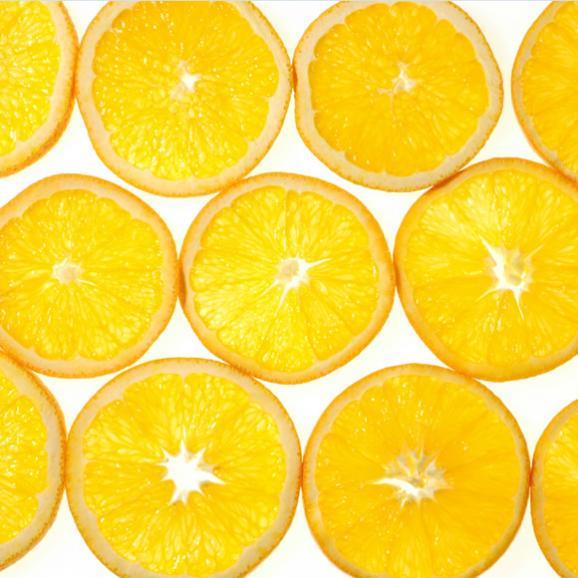 南国フルーツ・オーストラリア・アメリカ産オレンジS10玉06