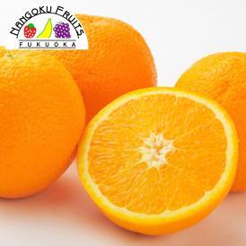 南国フルーツ・オーストラリア産オレンジ小20玉