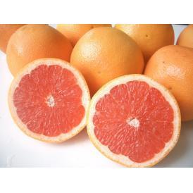 南国フルーツ・南アフリカ産グレープフルーツ(赤)S20玉