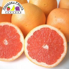 南国フルーツ・南アフリカ産グレープフルーツ ルビーL20玉