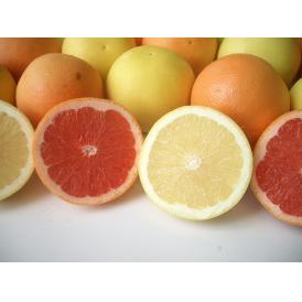 南国フルーツ・南アフリカ産紅白グレープフルーツL30玉