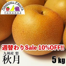 南国フルーツ・九州産和梨 秋月5kg