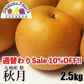 南国フルーツ・九州産和梨 秋月2.5kg