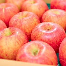 甘味・酸味・食感の三拍子が揃った人気のりんご!