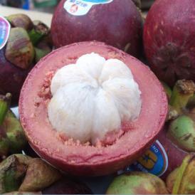 「果物の女王」と呼ばれる高級果実!