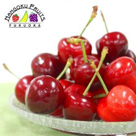 南国フルーツ・アメリカ産アメリカンチェリー 1kg