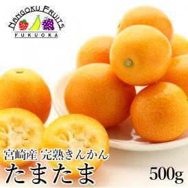 みやざきブランド認定フルーツ・宮崎産完熟きんかん たまたま!