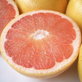 南国フルーツ・フロリダ産グレープフルーツ大30玉