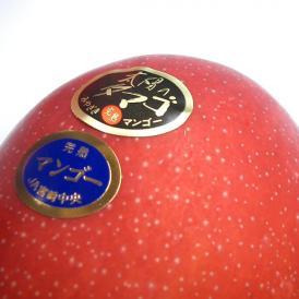 南国フルーツ・【数量限定】宮崎産完熟マンゴ-太陽のタマゴ2L1玉ギフト箱