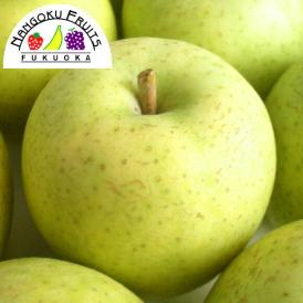 南国フルーツ・旬の青りんご約1.2kg(4~5玉)