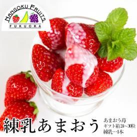 南国フルーツ・練乳あまおういちご24-30粒ギフト箱