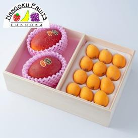 【送料無料】 旬のフルーツセット H01
