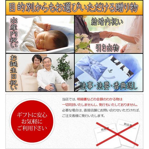 【送料無料】岐阜中津川本物の栗きんとん10個セット02