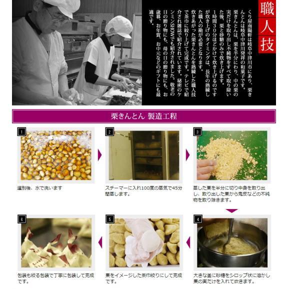 【送料無料】岐阜中津川本物の栗きんとん10個セット03