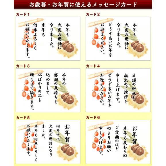 お歳暮 お年賀に♪ ギフト 【送料無料】栗きんとん入り干し柿 栗柿10個セット03
